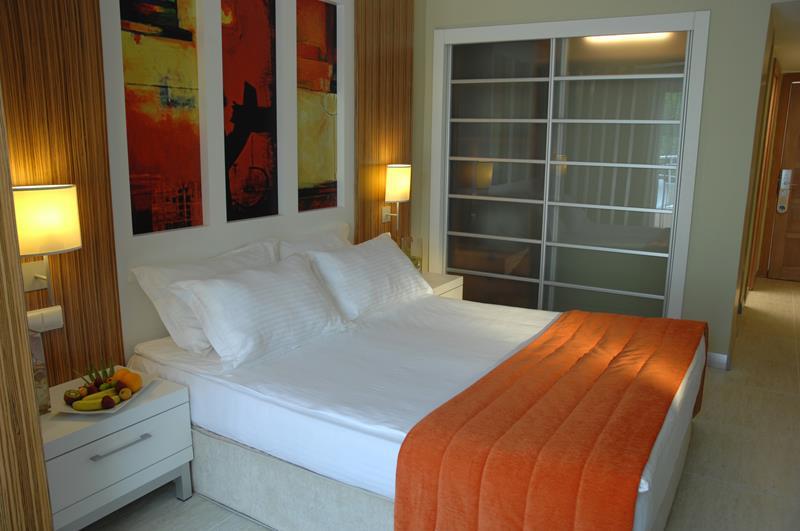https://aventur.ro/assets/media/imagini_hoteluri/BOISIS/BOISIS-HotelPict9-22489.jpg