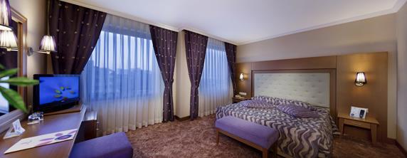 https://aventur.ro/assets/media/imagini_hoteluri/SDSILE/SDSILE-HotelPict8-19128.jpg